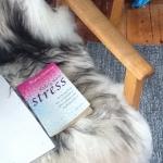 Stress er ikke en sygdom men en belastningstilstand