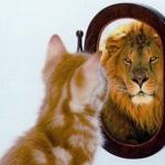 Løven i mig